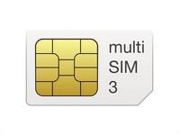 multiSIM 3